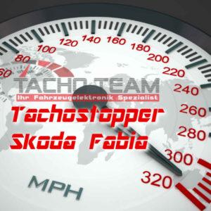 Tachofilter Skoda Fabia