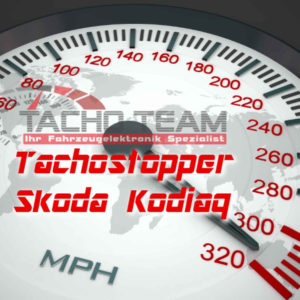 Tachofilter Skoda Kodiaq